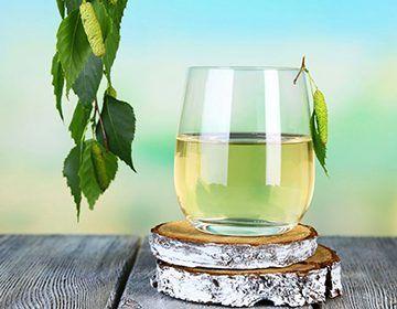Лікувальні властивості березового соку, способи його заготівлі та зберігання