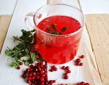 Лікувальні властивості листя брусниці, застосування і рецепти чаю
