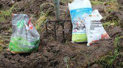 Добрива і нітрати: рекомендації агрохіміків